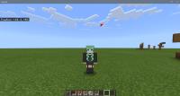 Minecraft 11_17_2020 9_35_35 AM.png