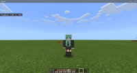 Minecraft 11_17_2020 9_35_43 AM.png