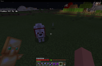 Minecraft 11_18_2020 10_34_47 PM.png