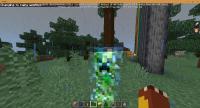 Minecraft 11_12_2020 11_33_13 AM.png