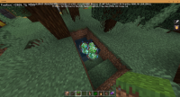 Minecraft 11_12_2020 1_37_23 PM.png