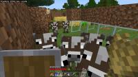 Minecraft 11_20_2020 9_21_36 AM.png