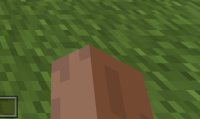 Minecraft 11_20_2020 9_28_58 PM (2).png