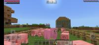 Screenshot_20201128-203657_Minecraft.jpg