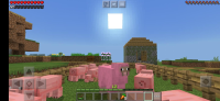 Screenshot_20201128-203613_Minecraft.jpg