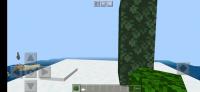 Screenshot_20201208-202211_Minecraft.jpg