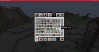Minecraft_ 1.16.4 - Singleplayer 12_17_2020 3_41_05 PM.png