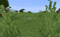 Minecraft Glitch (4).png