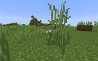 Minecraft Glitch (2).png