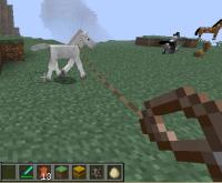 Foal Lead.jpg