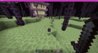 Minecraft 1_13_2021 1_34_49 PM.png