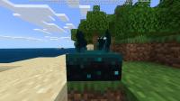 Minecraft 21_01_2021 00_14_08.png