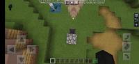 Screenshot_20210123-171944_Minecraft.png
