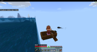 Minecraft 1_22_2021 6_33_19 PM.png