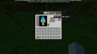 Minecraft 29_01_2021 12_52_34.png