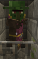 zombie villager which is bugged.PNG