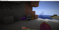 Minecraft 21w06a - Singleplayer 2_12_2021 12_49_18 AM.png