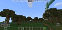 Screenshot_20210212-104021_Minecraft.jpg