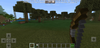 Screenshot_20210212-103941_Minecraft.jpg