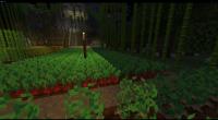 Minecraft 15-Feb-21 19_29_46.png