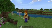 Minecraft 2021-02-19 23-46-30.gif