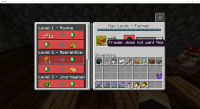 Minecraft 3_3_2021 3_06_38 PM.png