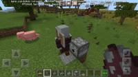 Screenshot_20210303-072651_Minecraft.jpg