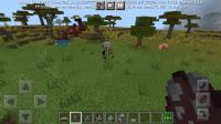Screenshot_20210303-072701_Minecraft.jpg