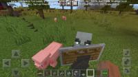 Screenshot_20210303-072636_Minecraft.jpg