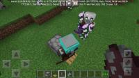 Screenshot_20210302-210430_Minecraft.jpg