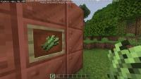 Minecraft 18_03_2021 07_00_37.png