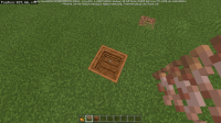 Minecraft 19_03_2021 07_34_29.png