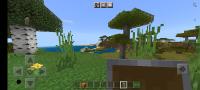Screenshot_20210321-150216_Minecraft.png