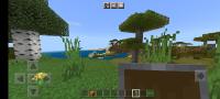 Screenshot_20210321-150213_Minecraft.png