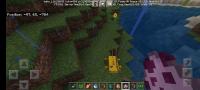 Screenshot_20210406_183847_com.mojang.minecraftpe.jpg