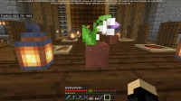 Minecraft 4_6_2021 5_52_20 PM.png