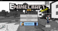 Minecraft 4_8_2021 6_28_51 PM.png