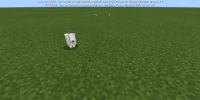 Screenshot_2021-05-14-19-28-15-583_com.mojang.minecraftpe.jpg