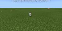 Screenshot_2021-05-14-19-28-30-200_com.mojang.minecraftpe.jpg