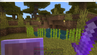 Minecraft Bedrock Sugarcane not growing 5_14_2021.png