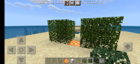 Screenshot_2021-06-10-09-45-20-633_com.mojang.minecraftpe.jpg