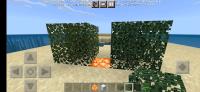 Screenshot_2021-06-10-09-44-00-791_com.mojang.minecraftpe.jpg