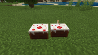Minecraft 7_15_2021 5_40_31 PM.png