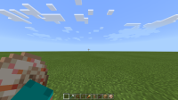 Minecraft 8_30_2021 5_33_22 PM.png