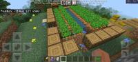 Screenshot_20210916-140944_Minecraft.jpg