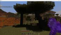 Minecraft 10_1_2021 1_04_20 AM.png