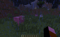 Pink sheep more common.png