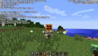 Pumpkin_OnHead.png