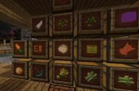 storageboxes.png