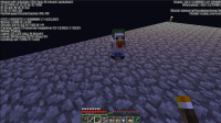 Bug Minecraft.PNG